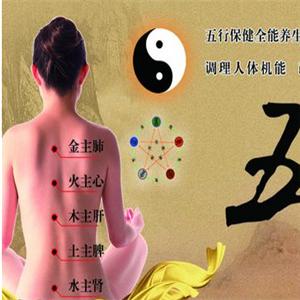 鳳禧經絡養生品牌