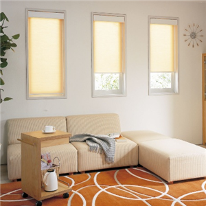 东装窗饰单扇窗帘