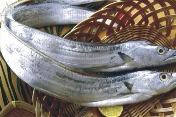 四通海产带鱼