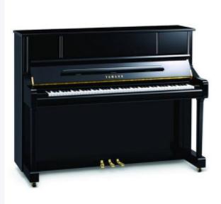 斯坦伯格钢琴图片