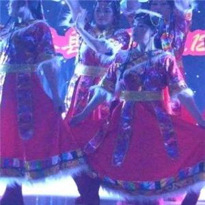 爱琴海少儿舞蹈团专业