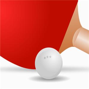 东方翔烨乒乓球教育展示