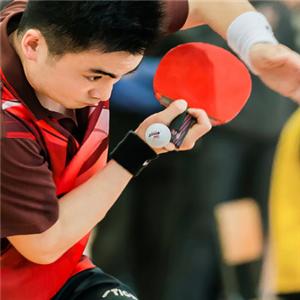 东方翔烨乒乓球教育比赛