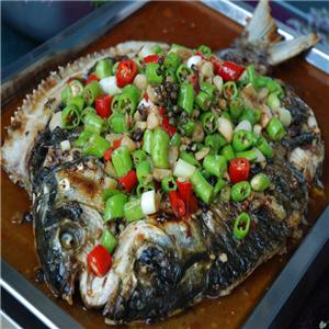 人魚座膠原黃骨魚經典