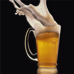 笨狗精酿啤酒展示