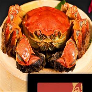 遵紀大閘蟹品種
