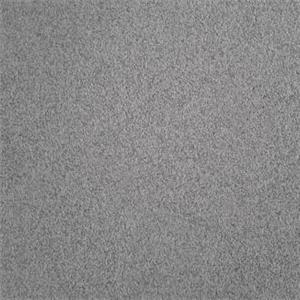 泰斯特灰泥灰色