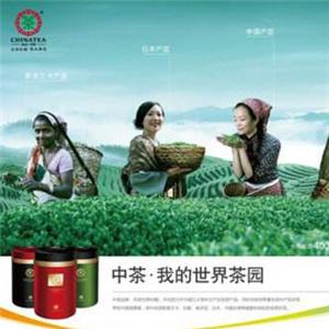 中粮茶叶专业