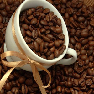好客咖啡专业