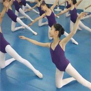 小雅舞蹈俱乐部培训