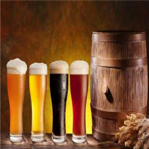 圣伯純精釀啤酒