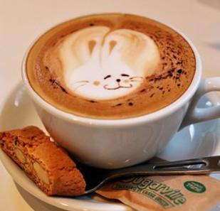 由心咖啡兔子