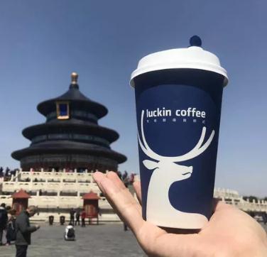 小蓝杯咖啡展示