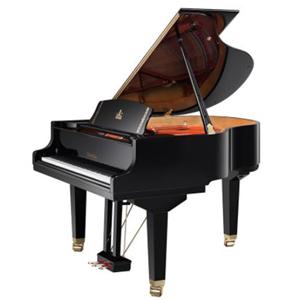 朗朗学钢琴钢琴