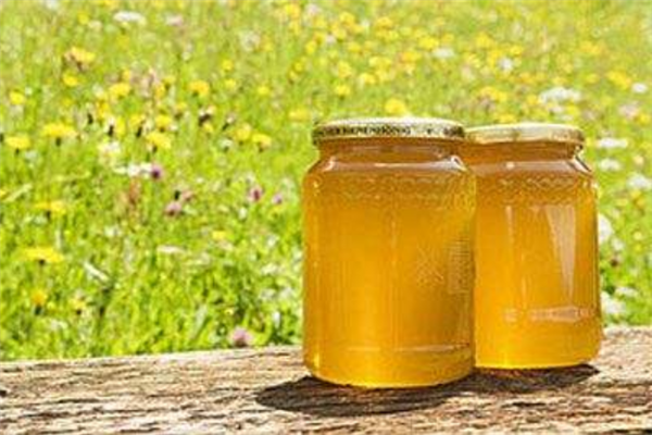 颐园牌蜂蜜