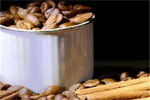楽岛咖啡品种