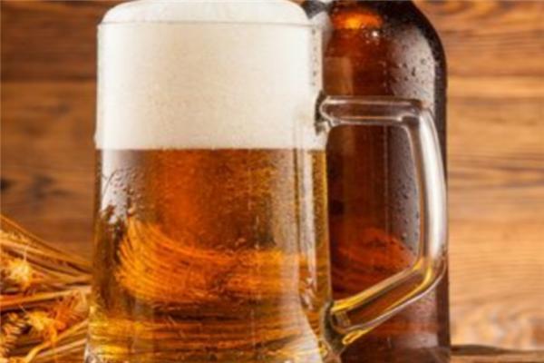 圣伯纯精酿啤酒特点