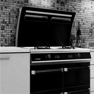 嵊州廚房電器專業