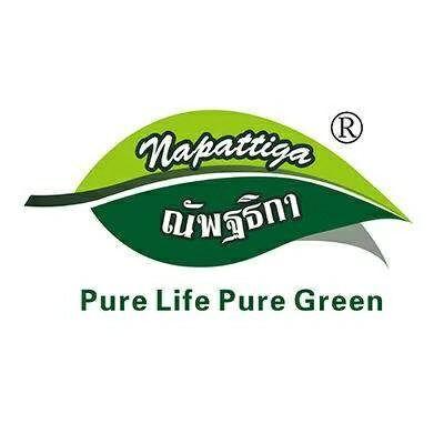 泰國Napattiga乳膠枕加盟