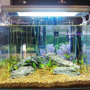 海纳利尔水族鱼缸