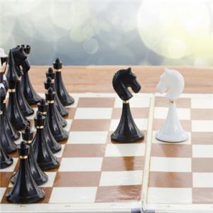奕之海国际象棋学校经典