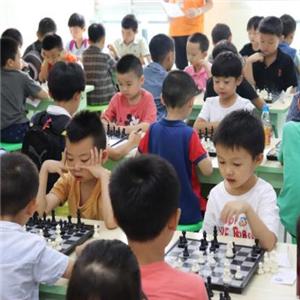 新蕾国际象棋俱乐部培训