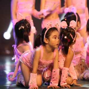 艾莎舞蹈品牌