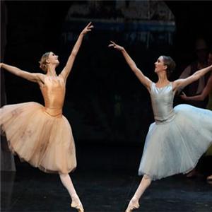 皇家芭蕾舞优秀