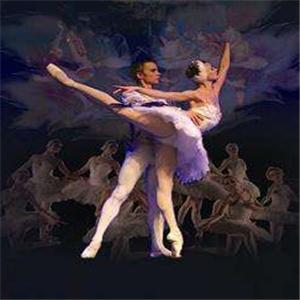 皇家芭蕾舞美丽