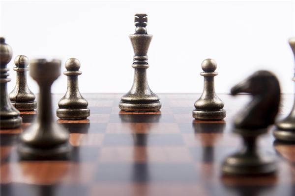 新蕾国际象棋俱乐部品牌