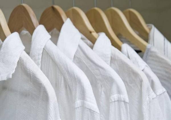 西施干洗衣架