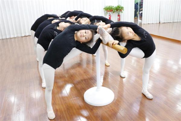 艾莎舞蹈类型