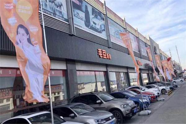 毛豆新車門店