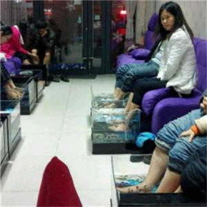 愛尚魚魚療養生館坐著