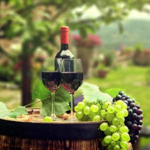 通天葡萄酒好喝