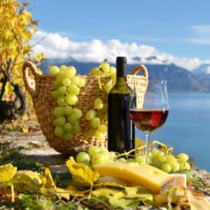 通天葡萄酒健康