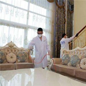 創綠家室內空氣凈化除甲醛沙發