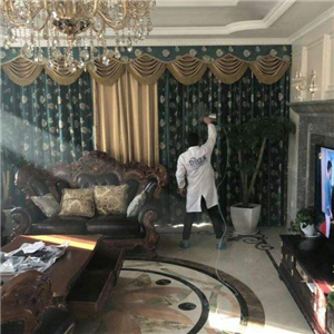 創綠家室內空氣凈化除甲醛地上