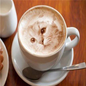COFFEEYANLAB咖啡濃