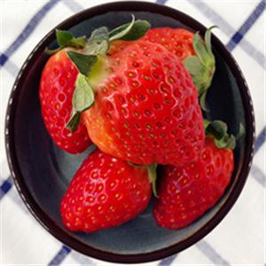 菱菱兔甘草水果经典