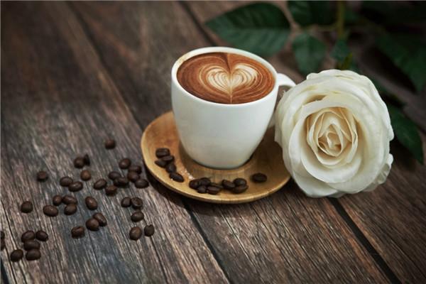 绿首阁咖啡厅加盟
