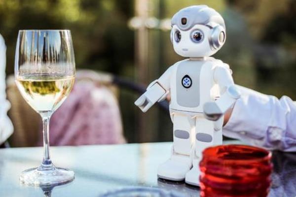 优必选智能机器人特色