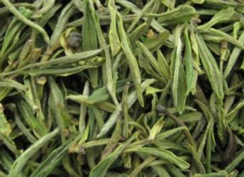 黃山毛尖茶葉