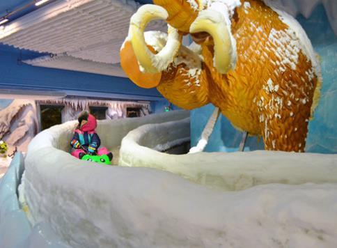 樂漫冰雪王國滑梯