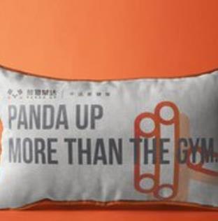 熊猫攀达健身枕头