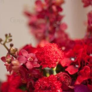 花海閣主題婚禮會館紅花