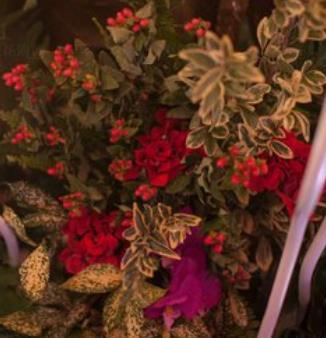 花海閣主題婚禮會館綠葉