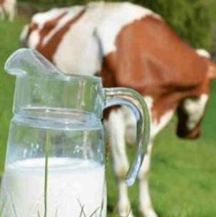 美玲羊奶正宗
