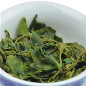 早春绿茶一杯
