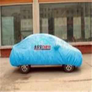 帕薩特車衣顏色
